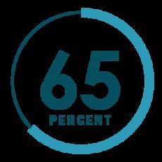 Risultati immagini per 65%